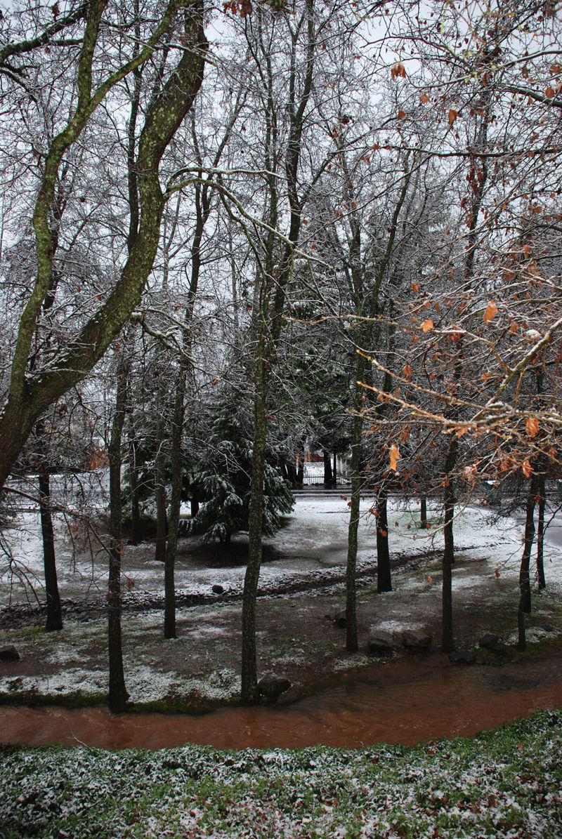 SnowFrontyard2-09