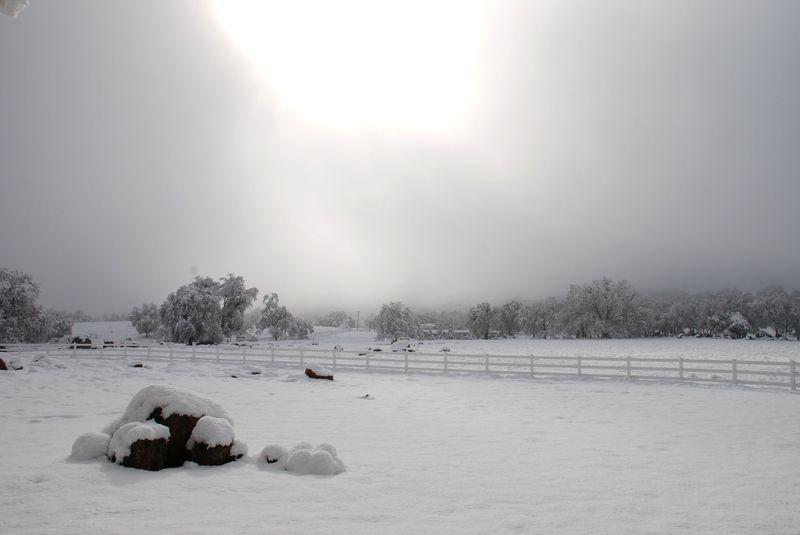 SnowProperty12-09