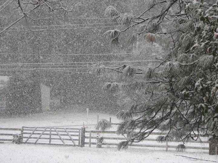 Winter0218