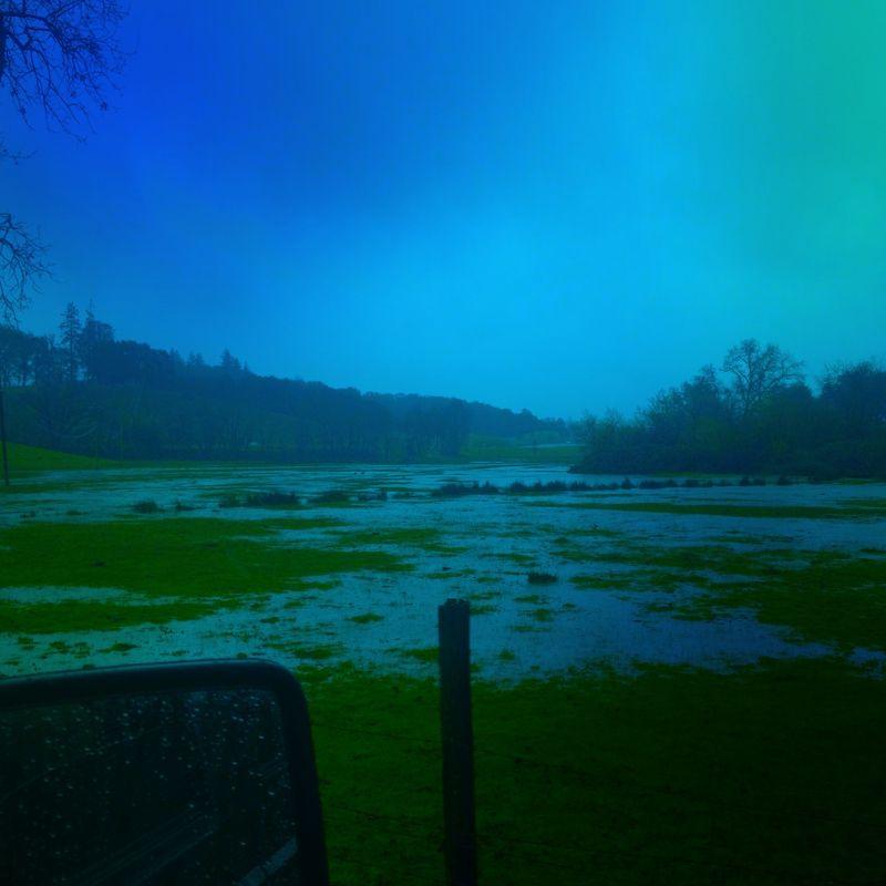 FloodedCowPasture3-14-12