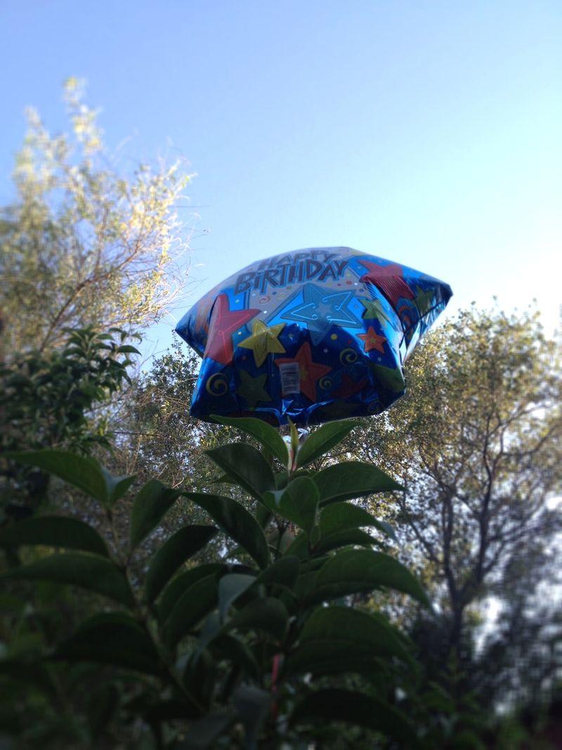 Khemi'sB-DayBalloon