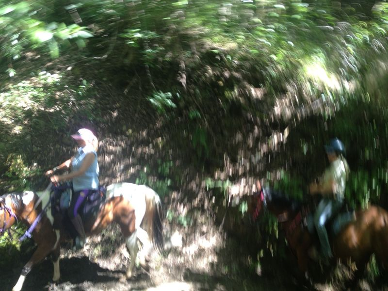 Kathie&Sam&Horses5-12