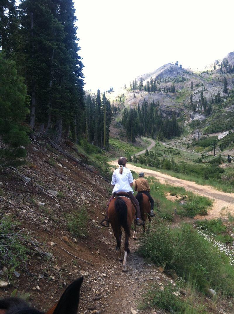 HorsesSquaw7-12