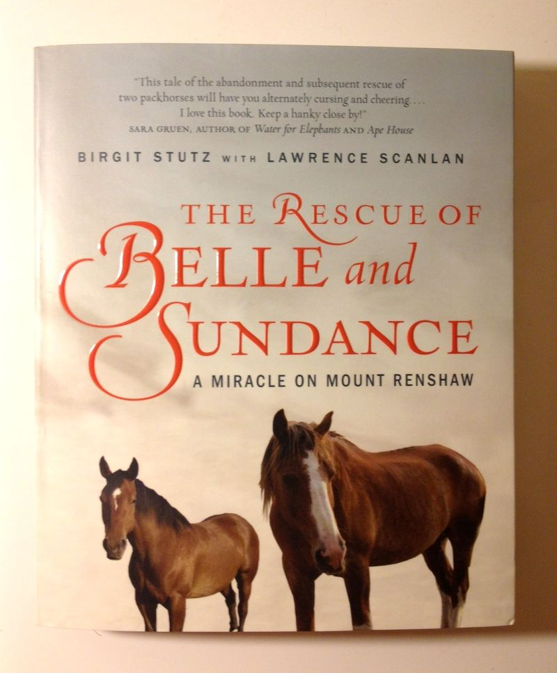 Belle&Sundance