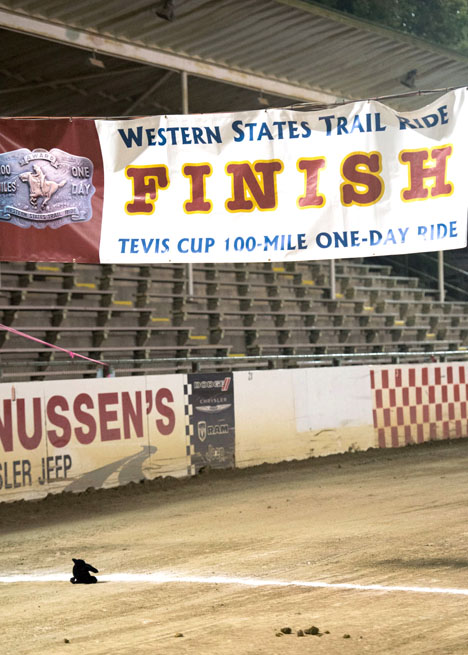 FinishLineTheRavenSm